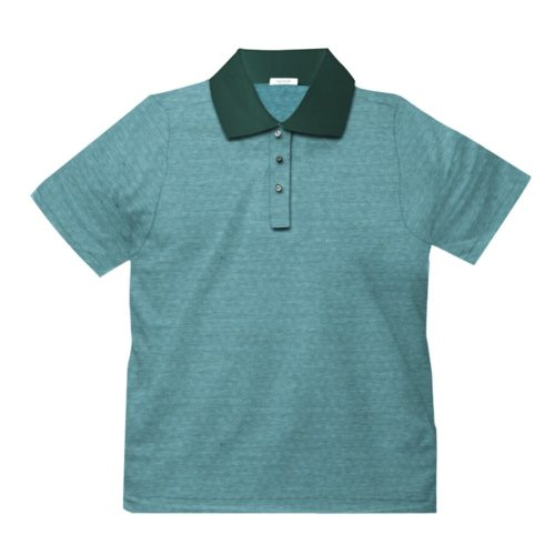Short sleeve men's cotton polo shirt light green 418078-04